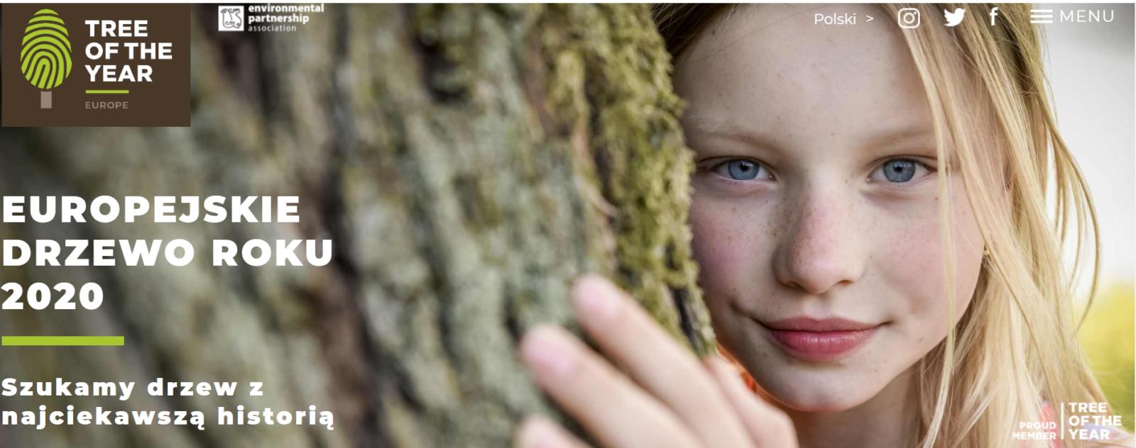 Konkurs na Europejskie Drzewo Roku 2020 trwa tylko do końca lutego!