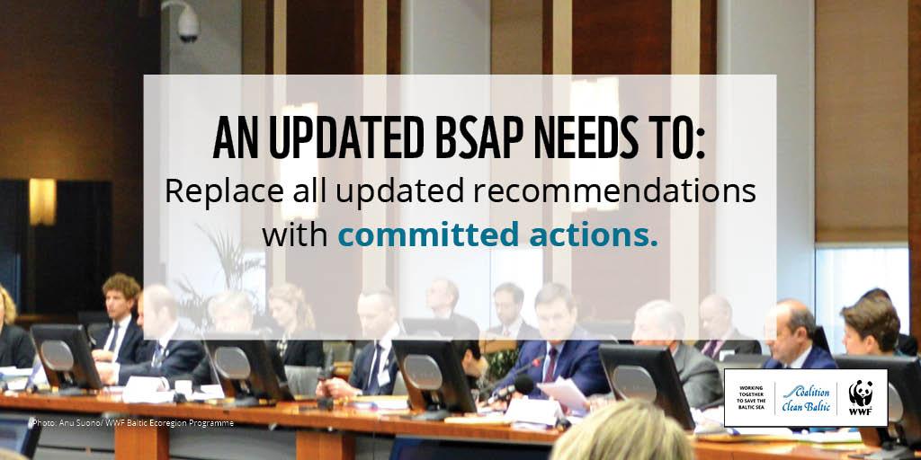 Kluczem organizacji pozarządowych skupionych wokół ochrony Morza Bałtyckiego będzie zrewidowany BAŁTYCKI PLAN DZIAŁANIA (BSAP).