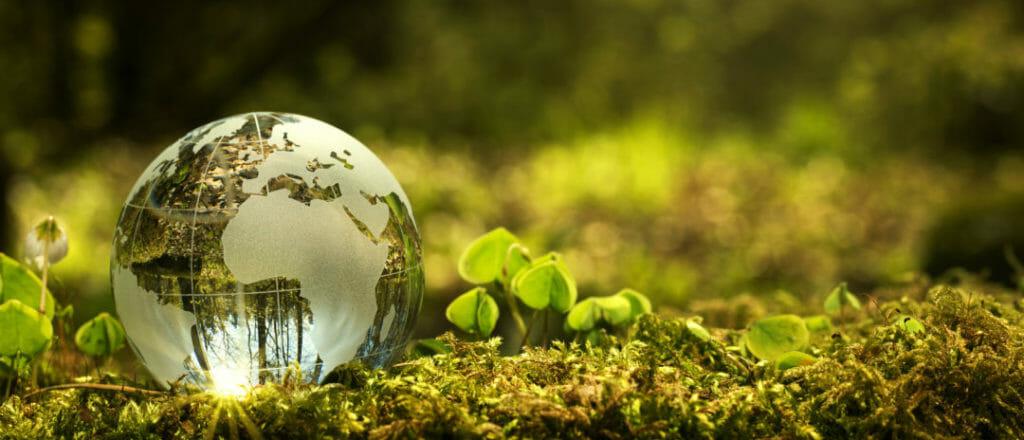 Międzynarodowy Dzień Ziemi – 22 kwietnia 2020 r.