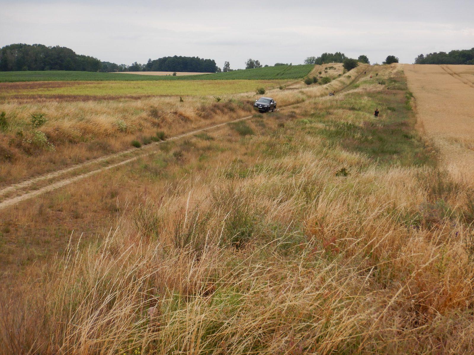 Ochrona muraw w polsko-niemieckim pasie granicznym rozpoczęta także po stronie polskiej!