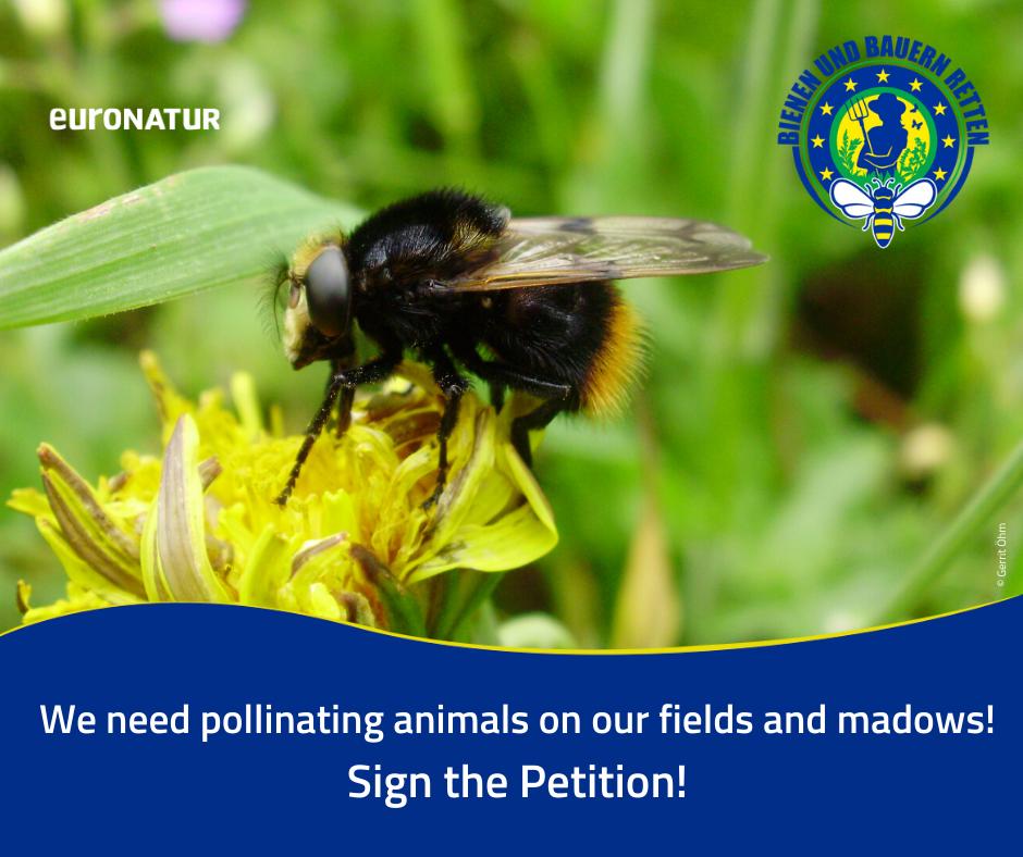 Ratuj pszczoły i rolników!