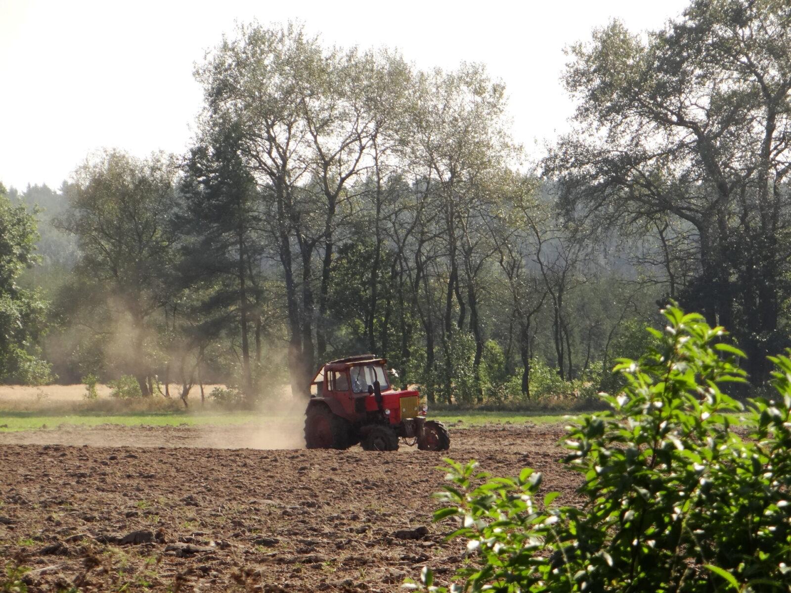 Czy Europejski Zielony Ład w rolnictwie powstrzymuje wypłukiwanie składników pokarmowych i ogranicza eutrofizację Morza Bałtyckiego?