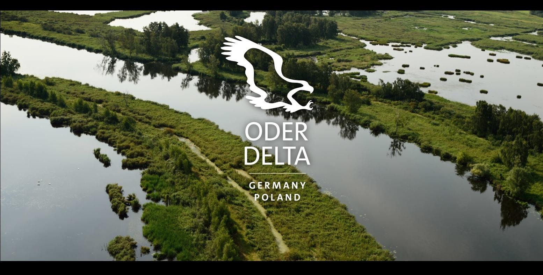 Dzika Delta Odry