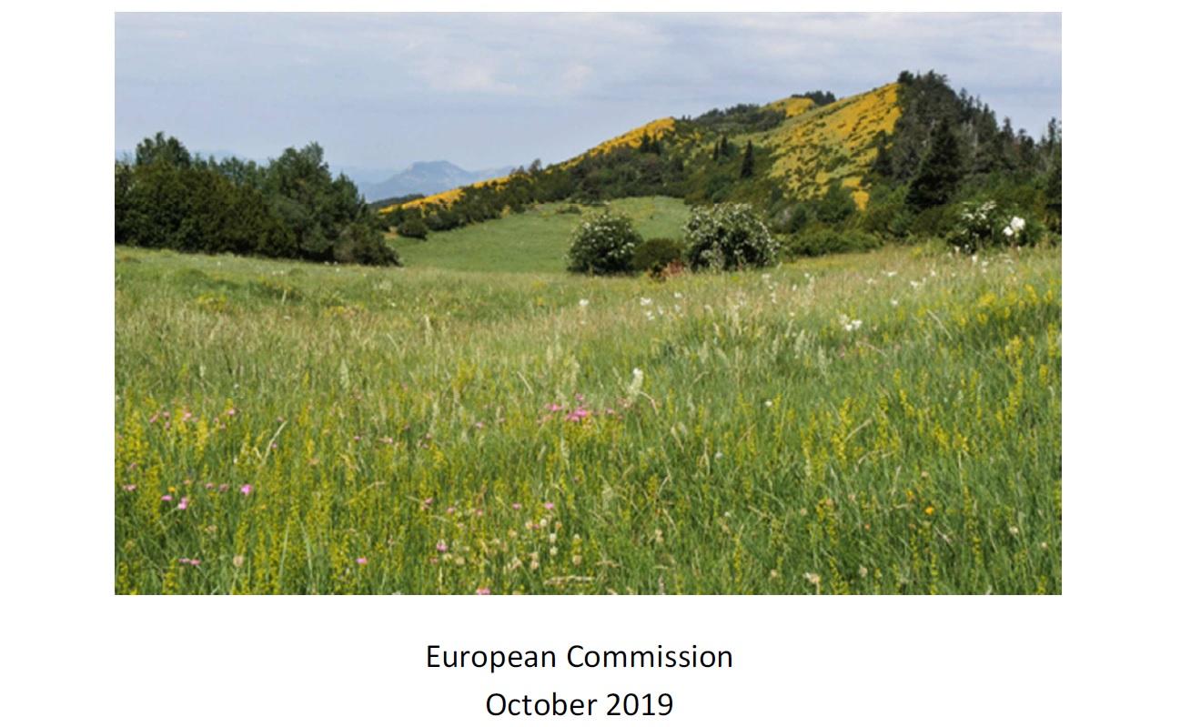 Unijny plan działania na rzecz utrzymania i odtworzenia właściwego stanu ochrony siedliska typu 6210