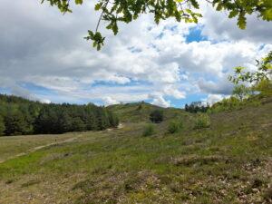 Wycieczki pomurawach kserotermicznych – nietylkotych zprojektu INT162! (część III)
