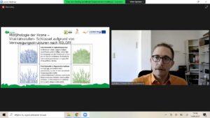 """""""Aleje przydrożne – planowanie, utrzymanie, diagnoza stanu zdrowotnego drzew orazwaloryzacja walorów przyrodniczych"""" – relacja zszóstego szkolenia wramach projektu INT142"""