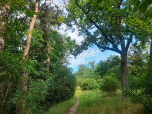 Wakacyjne spacery poDolinie Miłości