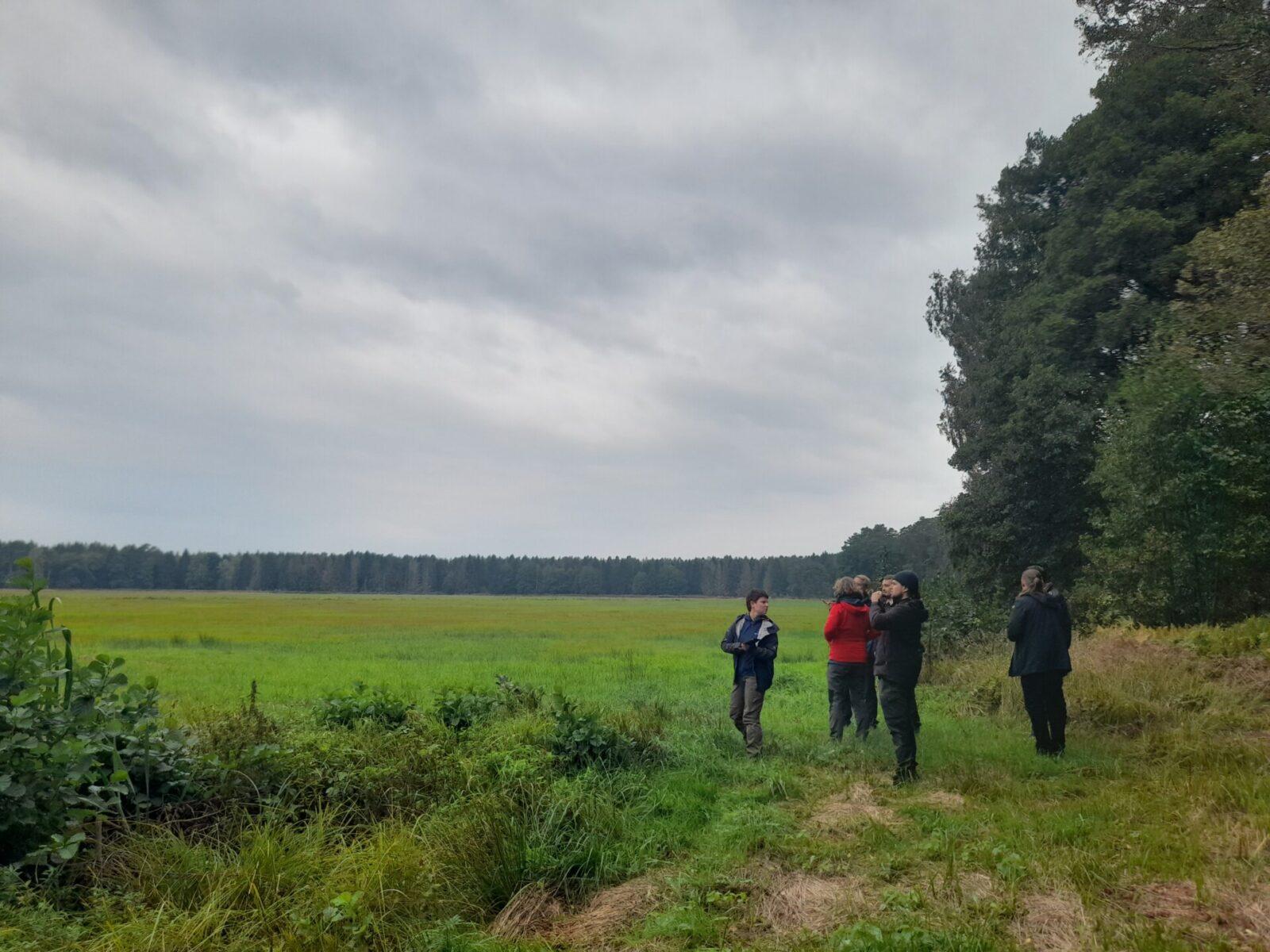 Rewilding Oder Delta – nowe pomysły dla transgranicznej ochrony przyrody