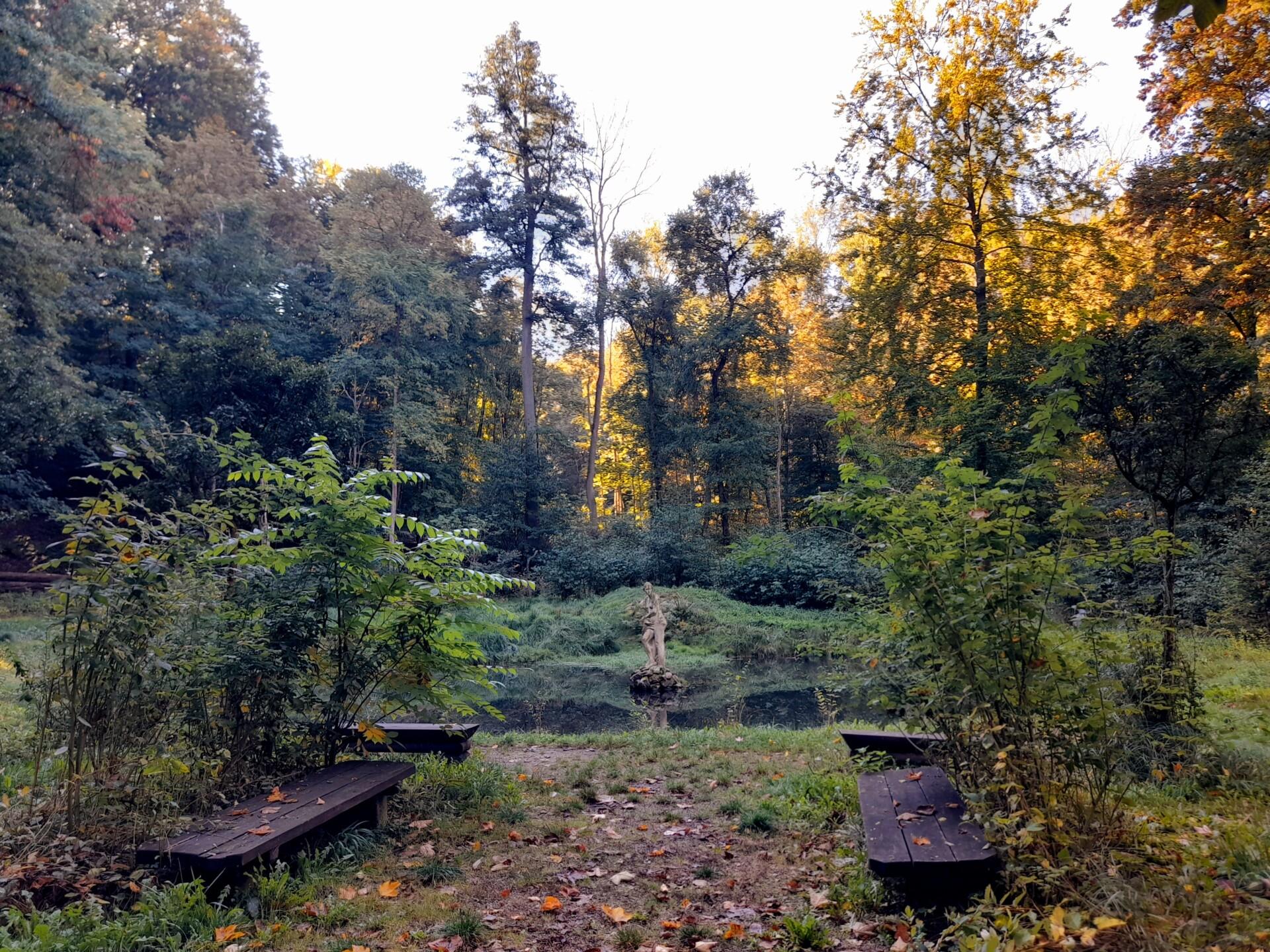 """Prezentacja """"Koncepcji zmiany użytkowania turystycznego parku naturalistyczno-krajobrazowego """"Dolina Miłości"""" w Zatoni Dolnej w celu zabezpieczenia ruchu turystycznego przed następstwami epidemii COVID-19"""" - webinarium już 28.10.2021 r."""